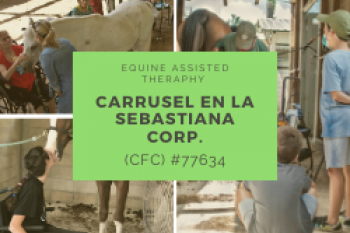 Equine Assisted Theraphy - Carrusel